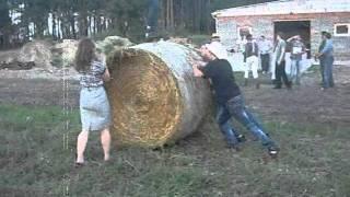 Olimpiada Rolnicza 2011
