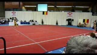 BK Acro 25.04.2010 Breendonk senior mixed pair 2de plaats Menno Vanderghote - Julie Van Gelder