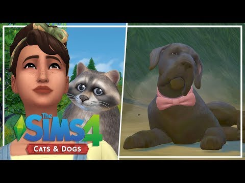 TIM RETURNS HOME // The Sims 4: Wolf Pack Challenge #6