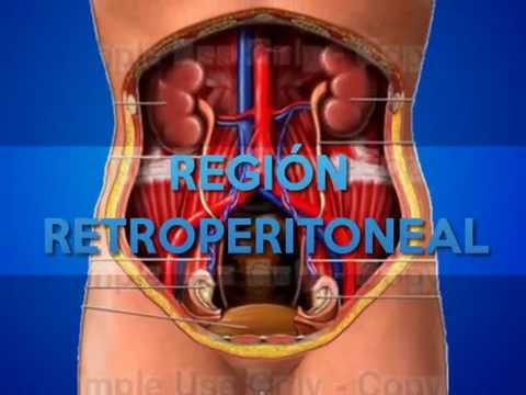 REGIÓN RETROPERITONEAL UNEFM - YouTube