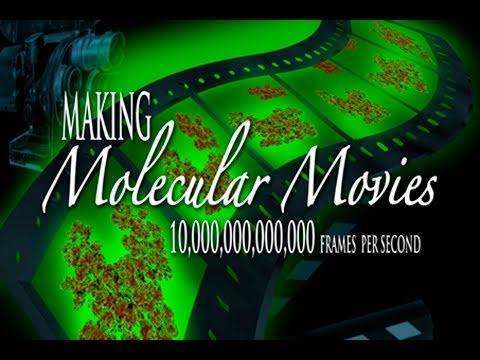 Public Lecture—Making Molecular Movies: 10,000,000,000,000 Frames per Second