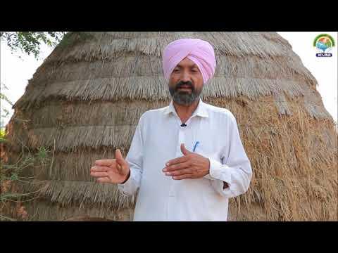 Organic Farmers of Punjab Gurmeet Singh Bahawlpur