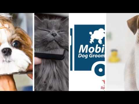Mobile Pet Grooming in Menlo Park - (650) 271-4282