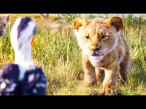 i-just-can't-wait-to-be-king-song-scene---the-lion-king-(2019)-movie-clip