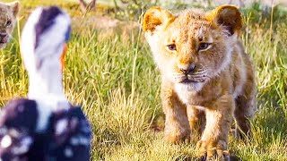 I Just Can't Wait to be King Song Scene - THE LION KING (2019) Movie Clip MP3