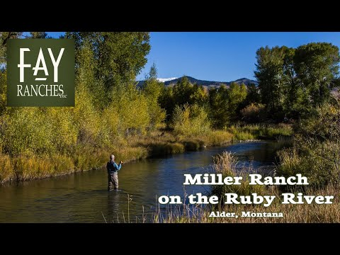 Montana Ruby River Fishing Property For Sale | Miller Ranch On The Ruby River | Alder, MT