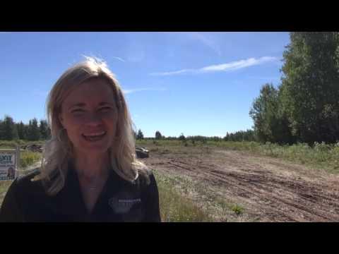 Boughton Bay Land, Launching, Prince Edward Island, Canada, PEI Real Estate