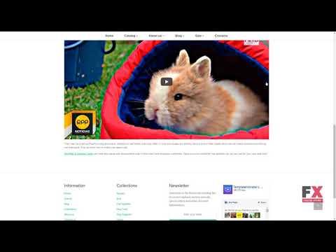 Pet Shop Responsive Shopify Theme TMT | Free Template  Johnathon Meri