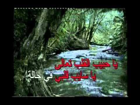 Arabic Karaoke tab leh Ragheb alame