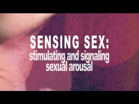 Sensing Sex: stimulating and signaling sexual arousal with Heather Hoffmann