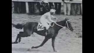 20世紀のアメリカ名馬100選