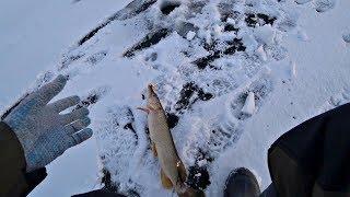 Рыбалка 2020 Только опустил балансир и сразу поклевка Ловля щуки зимой на реке