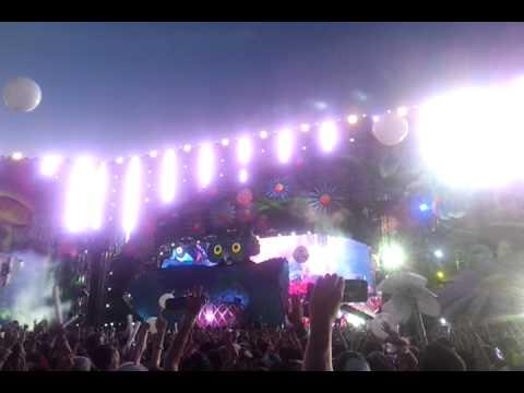 Dash Berlin @Electric daisy carnival Las Vegas2013