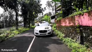 Jaguar wedding entry