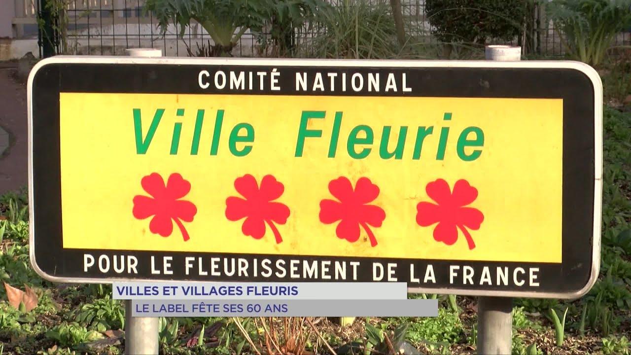 Yvelines | Villes et villages fleuris : le label fête ses 60 ans