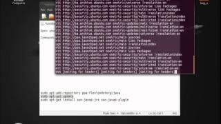 Tutorial:How to install Sun Java 6 Runtime in Ubuntu 11.10/12.04.