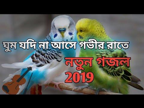 গভীর রাতে এই গজলটি শুনুন বাংলা নতুন গজল 2019।ঘুম যদি না আসে গভীর রাতে। Bangla New Gojol 2019