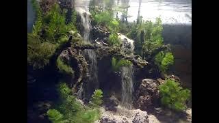aquascape  two sandfall