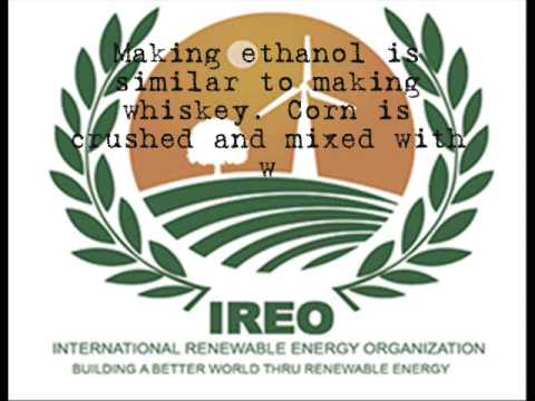 I.R.E.O - Intergovernmental Renewable Energy Organization - by Sula Costa(www.ireigo.org)