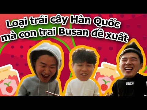 Loại trái cây Hàn Quốc mà con trai Busan đề xuất