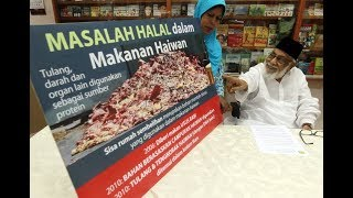 Include halal elements in animal feed - CAP