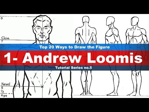 Top 20 Ways to Draw the Figure (1-Andrew Loomis) Tutorial series No.5