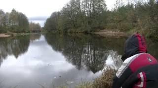 Рыбалка на живца осенью