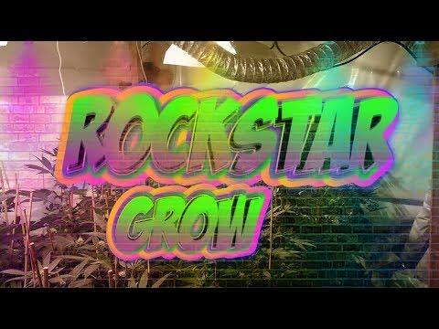 ROCKSTAR Grow pt4!! - Part of