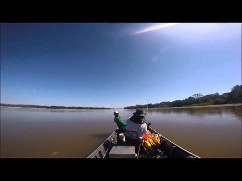Pescaria de Cacharas - Araguaia - Luiz Alves - GoPro - Pesque e solte