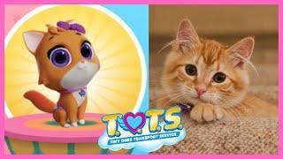 Cute Tots And Baby Animals | Disney Junior Tots