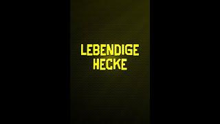 Honeycamp Podcast - Lebendige Hecke