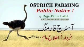 Ostrich Farming_Public Notice (Lec5) Raja Tahir Latif #PakOstrich