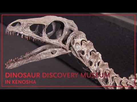 Tour the Dinosaur Discovery Museum in Kenosha, Wis.