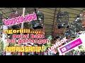 Murai Batu Full Gantangan Pameran Lomba Burung Berkicau Event Bupati Cup  Lombok Tengah  Mp3 - Mp4 Download