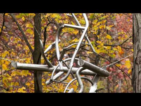 Laumeier Sculpture Park Reflects on 40 Years (HEC-TV Scope)