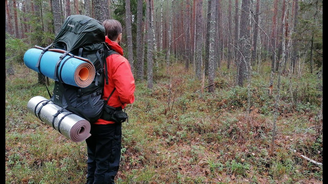 НАШЛИ КОСТИ ЖИВОТНОГО В ЛЕСУ. РАЗВЕДКА МЕСТА ДЛЯ ФОТОЛОВУШКИ. Ночь в лесу. Ноябрь. Пеший туризм #1