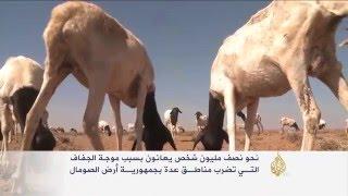 الجفاف يهدد نصف مليون شخص بالصومال