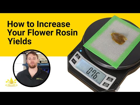 How To Increase Your Flower Rosin Yields