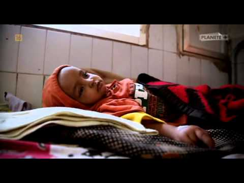 Bhopal - Chemiczna Katastrofa [2011] [Lektor PL]