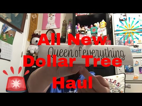 Dollar Tree ~ALL NEW~ Haul +SUPER EXCITING NEW ITEMS+ || August 5, 2020