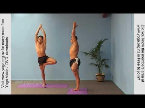 Tree pose Yoga Posture