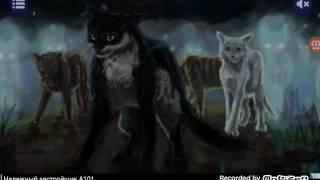 Дикие коты :Буревестник.  Реклама - зло!