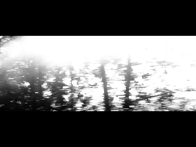 Gaspard Dehaene -  Franz Schubert Sonate D 959 en la Majeur/  Andantino