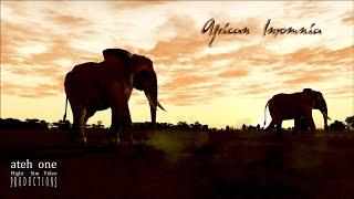 African Insomnia [FSX Film]