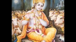 Jaya Jaya Krishna Mukunda Murari Devotional Song