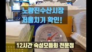 노량진수산시장 숙성모듬…