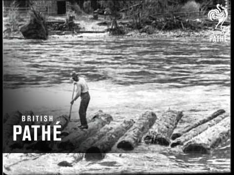 Logging In Idaho - U.S.A. (1926)