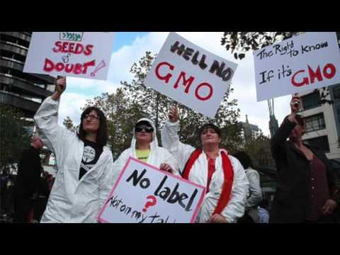 GMO's Must Go
