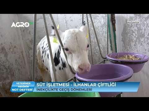 Süt İşletmesinde Karlılık / Agro TV