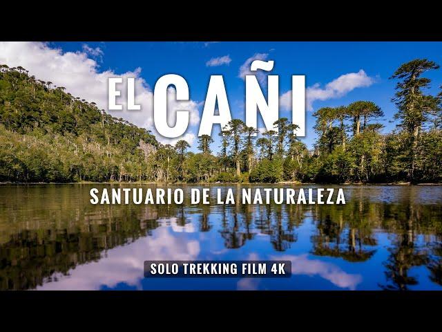 Santuario El Cañi en 4K: Trekking en Pucón, Chile 18 Kms